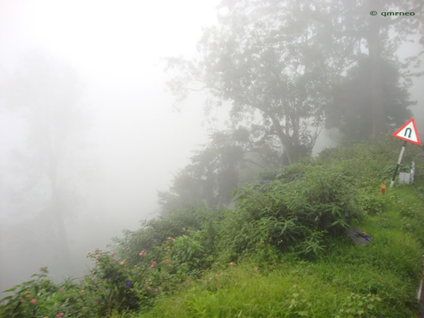 Munnar hills beauty mntravelog