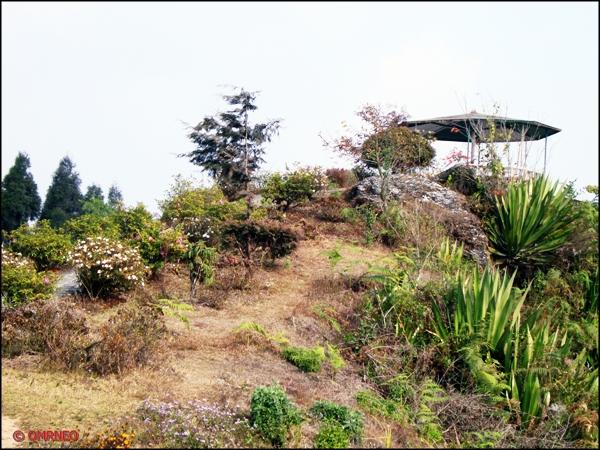 Deolo Hills 1, Kalimpong mntravelog