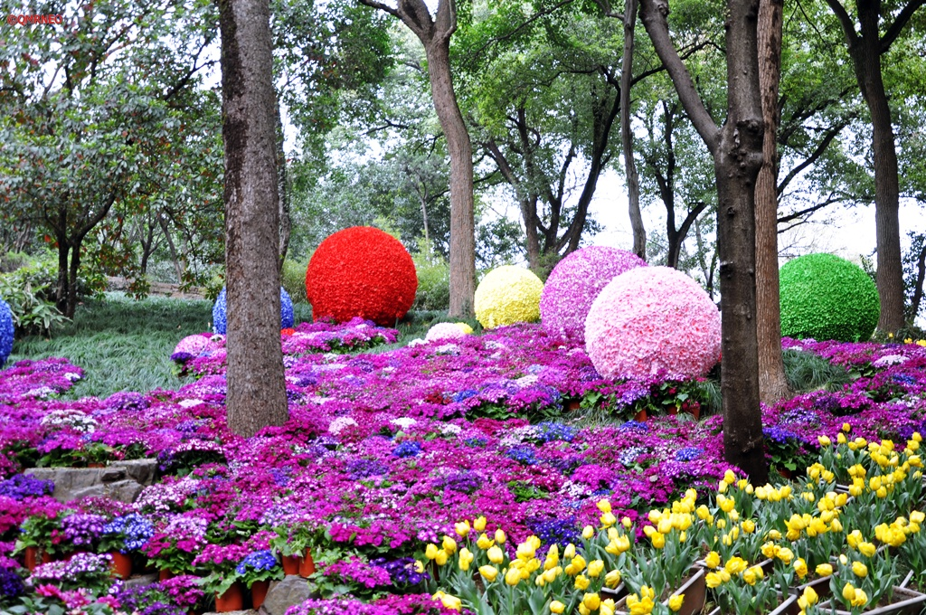 Colorful welcome with colorful balls Tiger Hill Suzhou Jiangsu China mntravelog