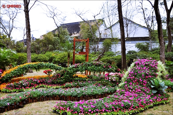 Humble Administrator Garden Flower Decoration Suzhou China mntravelog