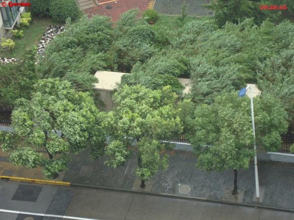 Typhoon Muifa hit Shanghai_high speed winds_MNTravelog