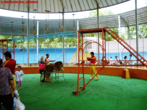 Large Square Performing Arts(Inside Cage) at Arena mountain beasts MNTravelog