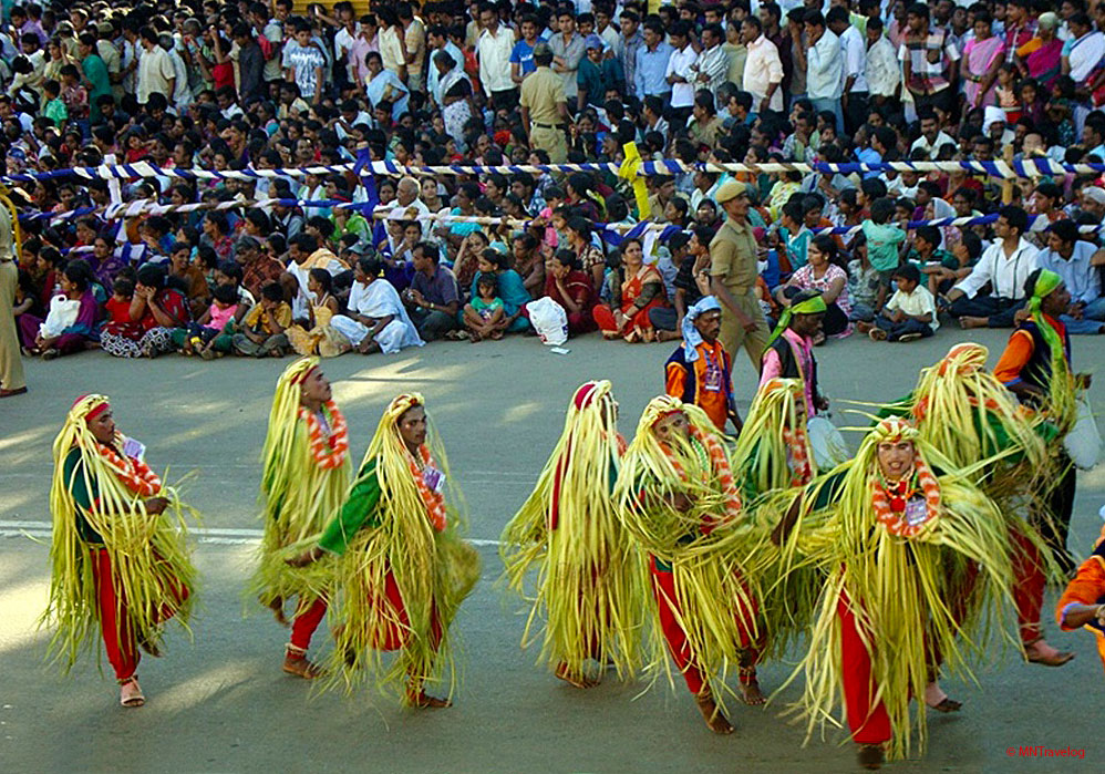 Mysore-Dasara-procession ,-Culture-across-Mysore